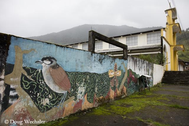 Jocotoco mural (1 of 3)