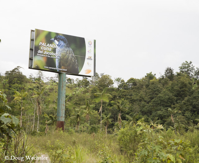 Jocotoco sign _F5A9116