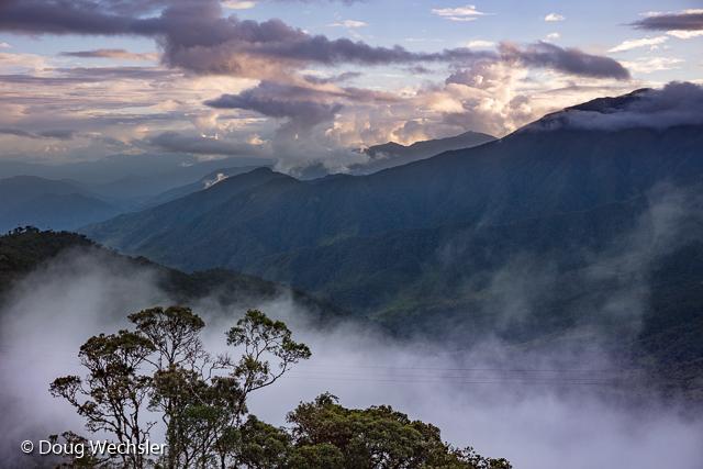 Tapichalaca Reserve