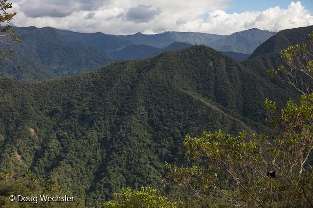 Mountains beyond Copalinga